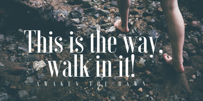 This is the way, walk in it!
